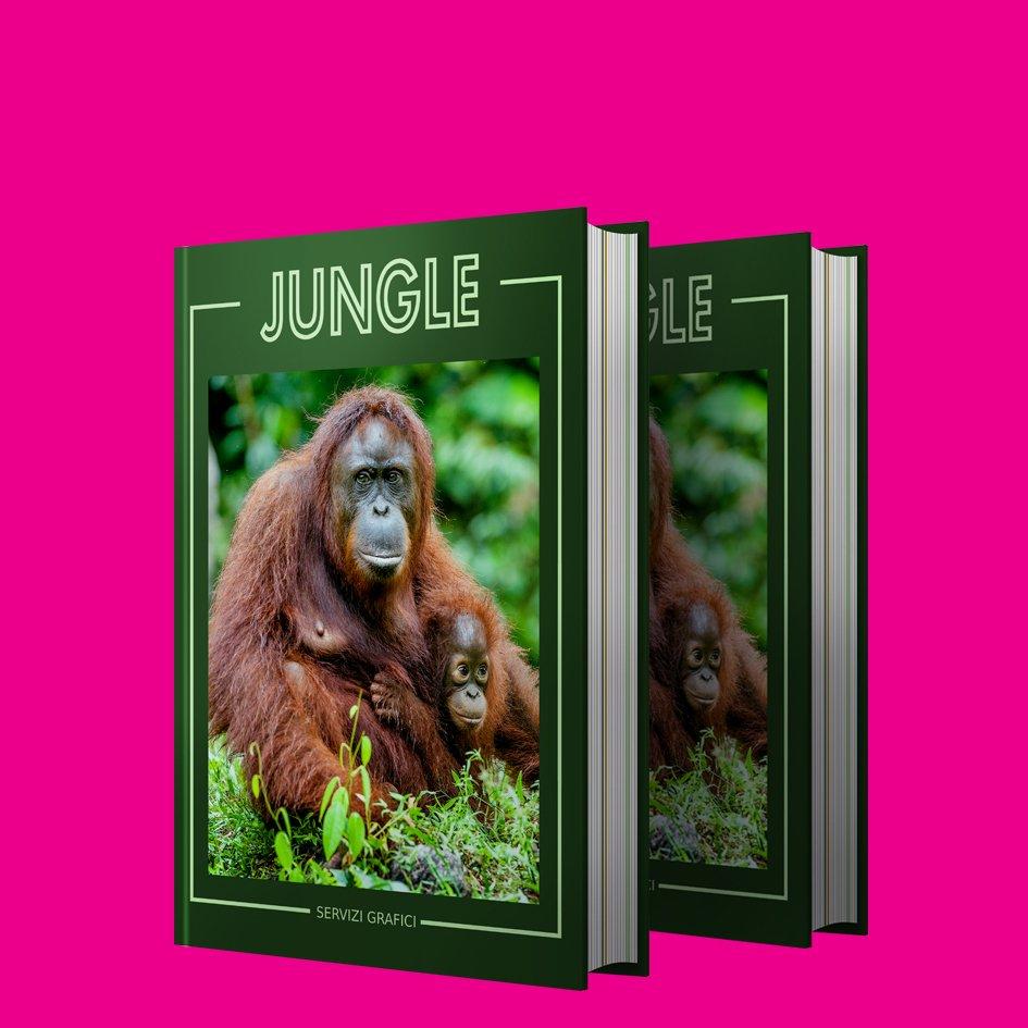 Stampa Online Libri E Cataloghi Anche A Piccole Tirature